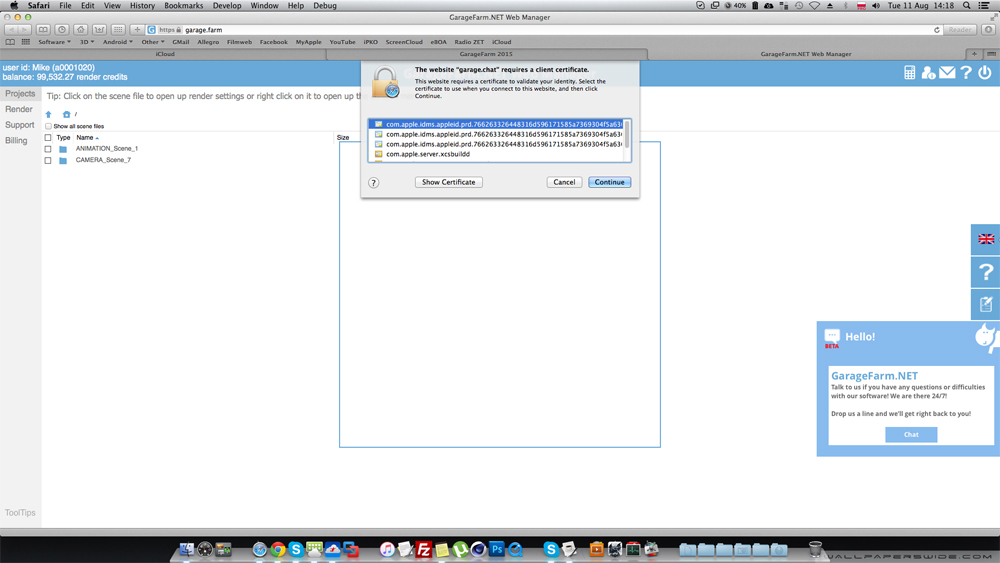 Web Manager certificate issue screenshot